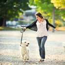 River Run Pet Sitters LLC