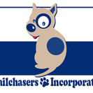 Tailchasers Incorporated