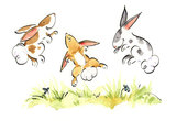 Bouncing Bunnies Family Daycare's Photo